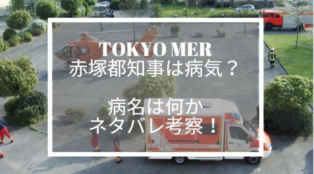 tokyo mer 赤塚 心臓 病気